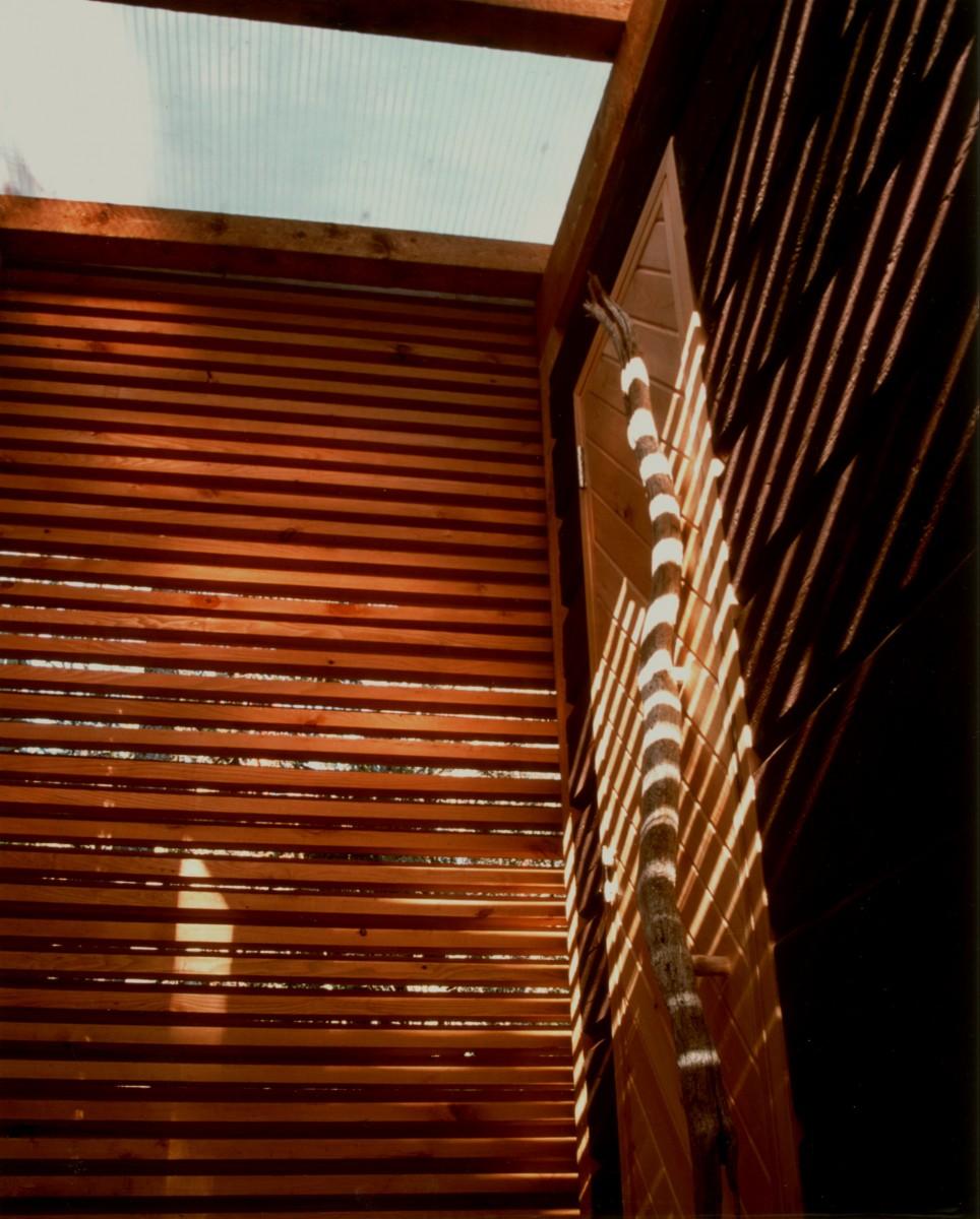 Sauna door, lattice wall and translucent roof